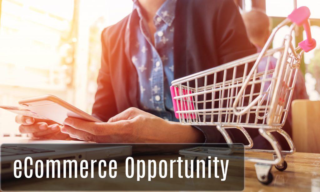 eCommerce Opportunities - Online Lalaji (1)